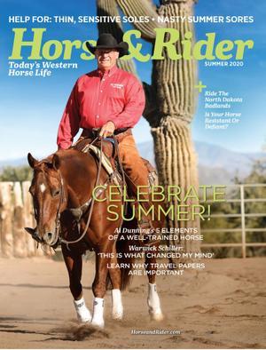 Horse & Rider