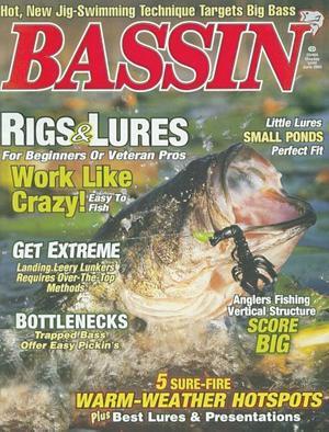 Bassin'
