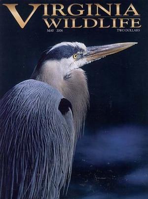 Virginia Wildlife
