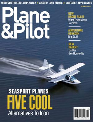 Plane & Pilot